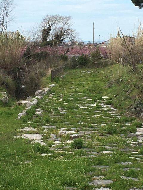 mondragone appia antica rifiuti (47)