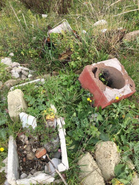 mondragone appia antica rifiuti (50)