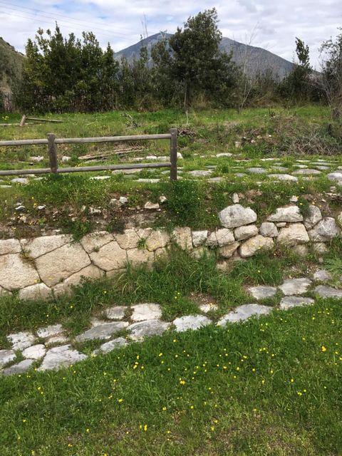 mondragone appia antica rifiuti (52)