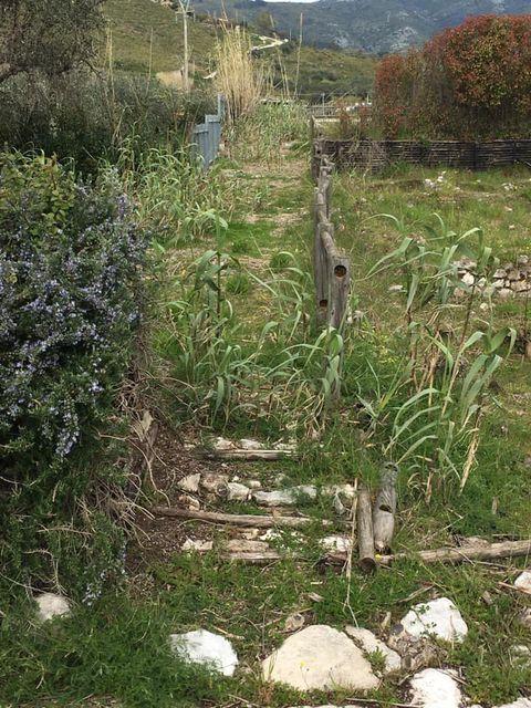 mondragone appia antica rifiuti (8)