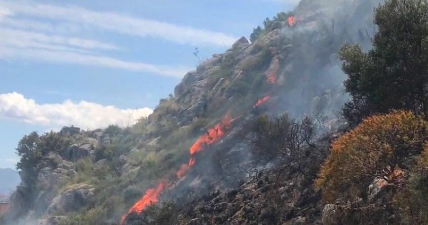 incendio bosco montagna