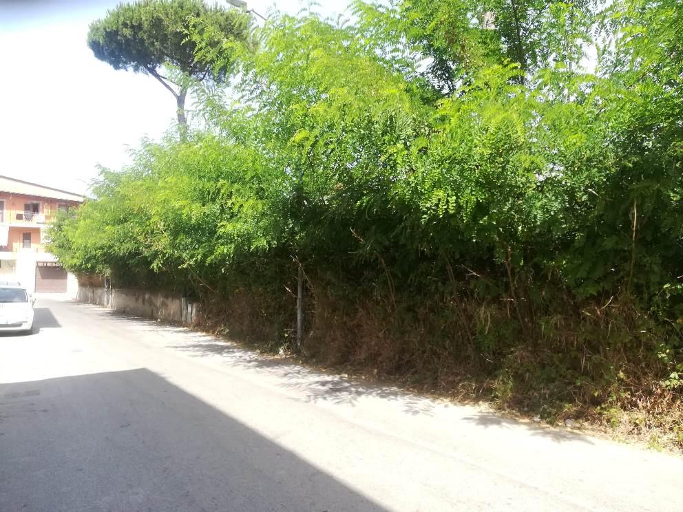 parete strada poliambulatorio ripulita (4)