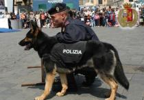 Cane Poliziotto2