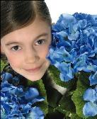 Fiori Azzurro