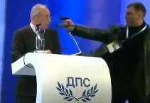 Bulgaria Pistola Politico