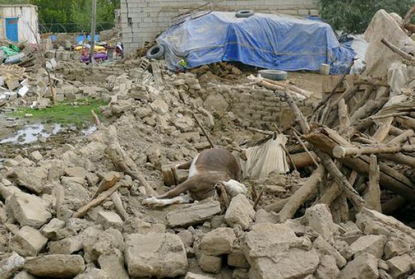 Terremoto Iran 2013