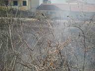 Incendio Scarpata1
