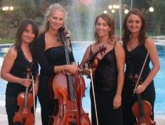 Muse String Quartet