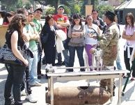 Esercito Studenti Casertani
