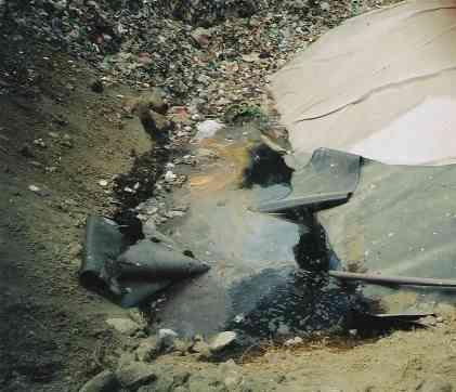 Uttaro0012