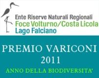 Premio Variconi