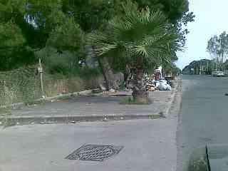 Viale Granacci 29 05 2008 5