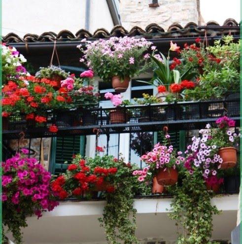 Balcone In Fiori