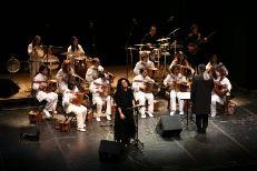 Piccola Orchestra Viola