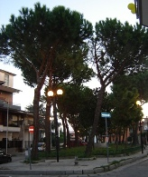 Piazza Augusto