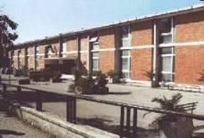 Scuola Media Vitale
