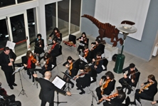 Orchestra Sirio