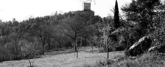 Santangelo Dalife