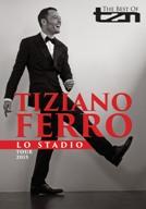 Tiziano Ferro Stadio2015 12