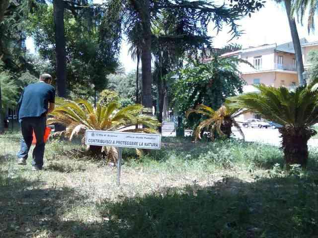 Villacomunale Cittadino1